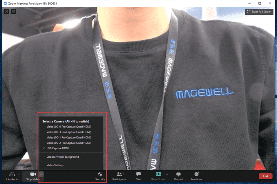 zoom_magewell_iview_data_video_conferencing